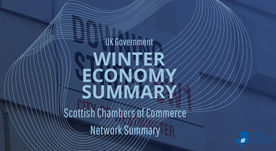 Winter Economy Summary